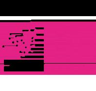 Logo été métropolitain
